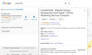 Google-My-Business-Listings-ColorWhistle